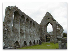 The ruins of the Roscommon Dominican Friary